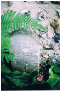 Soot's tombstone copyright Carole Tyrrell
